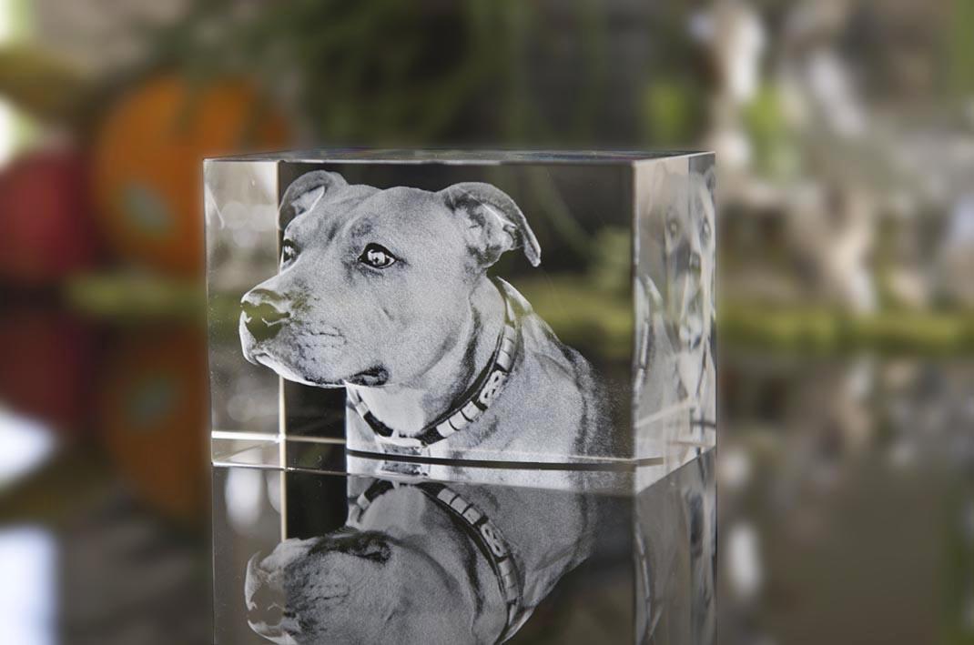 3D Laser Kristall Glasblock Mit Led Beleuchtung | 3d Kristallgravur Studio Lasergravuren Und 2d Merchandising